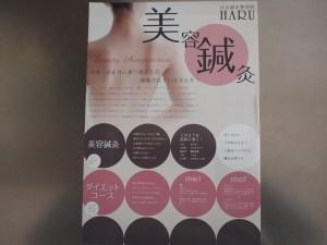 Handbill -2